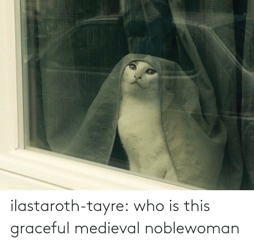 who is this: ilastaroth-tayre: who is this graceful medieval noblewoman