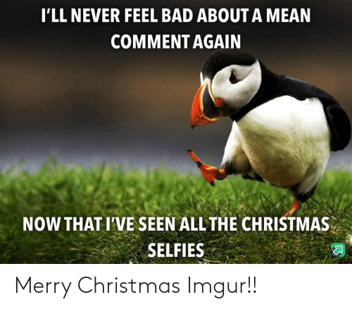 merry: I'LL NEVER FEEL BAD ABOUT A MEAN  COMMENT AGAIN  NOW THAT I'VE SEEN ALL THE CHRISTMAS  SELFIES Merry Christmas Imgur!!
