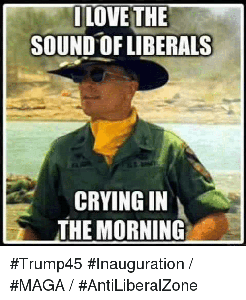 Liberal Crying: ILO  THE  SOUND OF LIBERALS  CRYING IN  THE MORNING #Trump45 #Inauguration / #MAGA / #AntiLiberalZone
