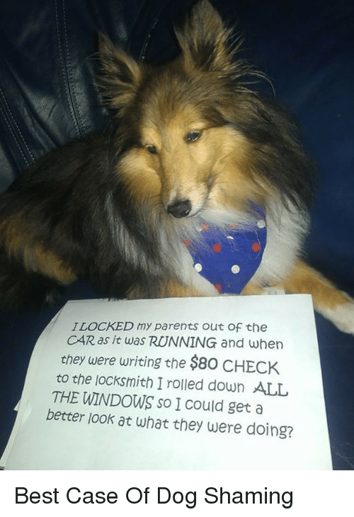 Better Look: ILOCKED my parents out Of the  CAR as it was RUNNING and when  chey were writing the $80 CHECK  to the jocksmith I rolled down ALL  THE WINDOWS so I Could get a  better look at what they were doing? <p>Best Case Of Dog Shaming</p>
