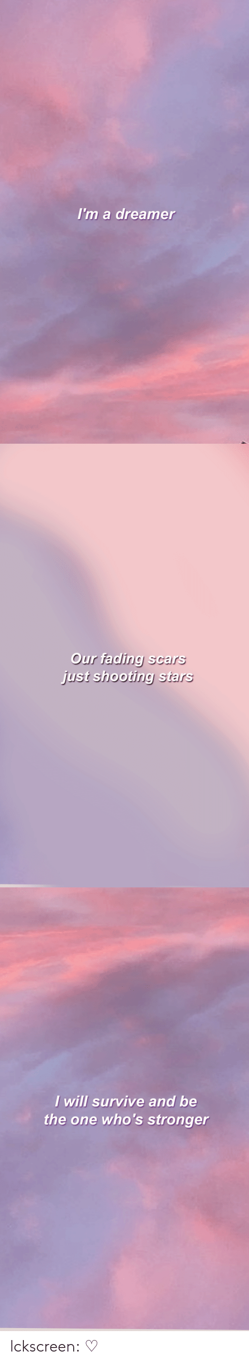 shooting stars: Im a dreamer   Our fading scars  just shooting stars   I will survive and be  the one who's stronger lckscreen:   ♡