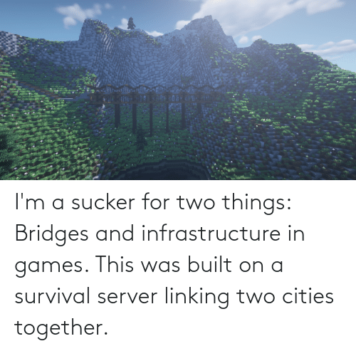 Games, Server, and Survival: I'm a sucker for two things: Bridges and infrastructure in games. This was built on a survival server linking two cities together.
