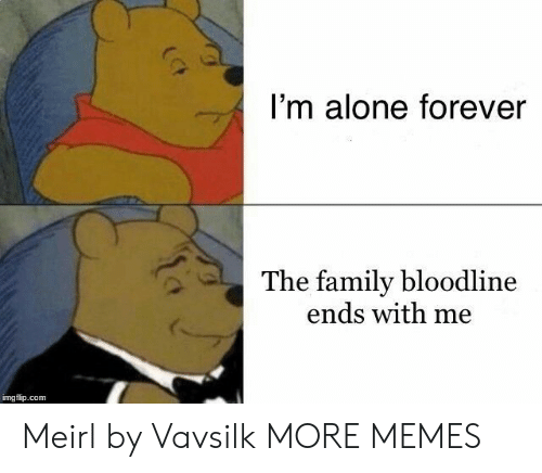 Being Alone, Dank, and Family: I'm alone forever  The family bloodline  ends with me  imgflip.com Meirl by Vavsilk MORE MEMES