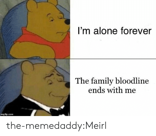 Bloodline: I'm alone forever  The family bloodline  ends with me  imgflip.com the-memedaddy:Meirl