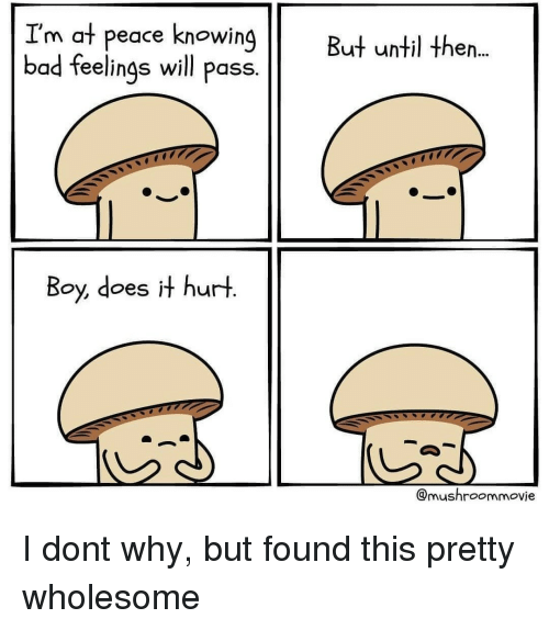 Bad, Wholesome, and Peace: I'm at peace knowing  bad feelings will pass.  But until then..  Boy, does it hurt  @mushroommovie I dont why, but found this pretty wholesome