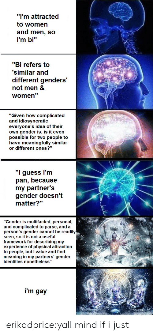 """Yall Mind If I: """"i'm attracted  to women  and men, so  l'm bi""""  """"Bi refers to  'similar and  different genders  not men &  women'""""  """"Given how complicated  and idiosyncratic  everyone's idea of their  own gender is, is it even  possible for two people to  have meaningfully similar  or different ones?""""  """"I guess l'm  pan, because  my partner's  gender doesn't  """"Gender is multifacted, personal  and complicated to parse, and a  person's gender cannot be readily  seen, so it is not a useful  framework for describing my  experience of physical attraction  to people, but l value and find  meaning in my partners' gender  identities nonetheless""""  i'm gay erikadprice:yall mind if i just"""
