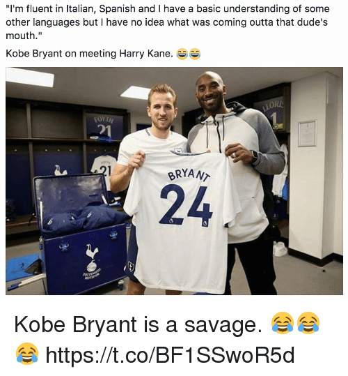 "ori: ""I'm fluent in Italian, Spanish and I have a basic understanding of some  other languages but I have no idea what was coming outta that dude's  mouth.""  Kobe Bryant on meeting Harry Kane. e  ORI  거  BRYANT  24  ormt Kobe Bryant is a savage. 😂😂😂 https://t.co/BF1SSwoR5d"