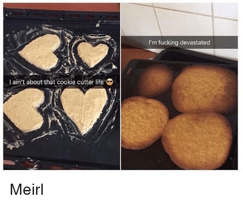 Fucking, Life, and MeIRL: I'm fucking devastated  Lain't about that cookie cutter life Meirl