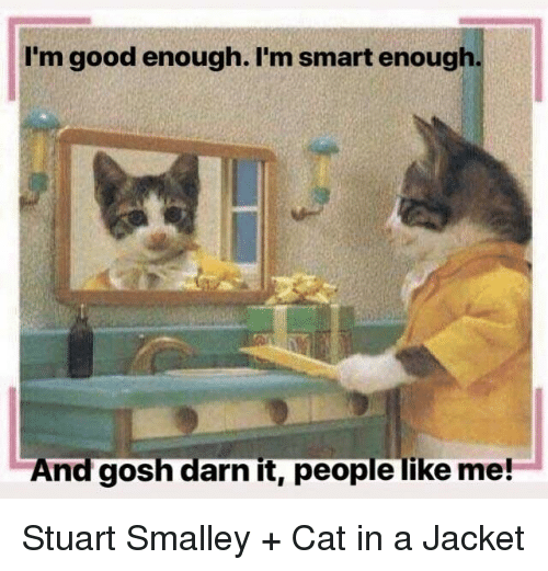 gosh darn it: I'm good enough. I'm smart enough  And gosh darn it, people like me! Stuart Smalley + Cat in a Jacket