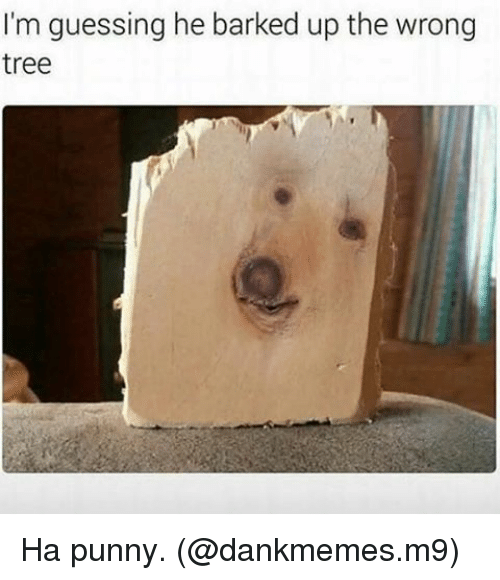 Punnies: I'm guessing he barked up the wrong  tree Ha punny. (@dankmemes.m9)