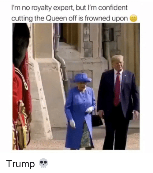 Memes, Queen, and Trump: I'm no royalty expert, but I'm confident  cutting the Queen off is frowned upon Trump 💀
