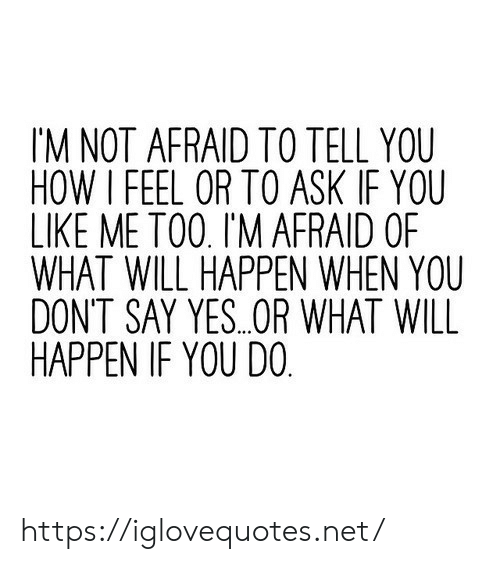 How, Ask, and Net: IM NOT AFRAID TO TELL YOU  HOW I FEEL OR TO ASK IF YOU  LIKE ME TO0. I'M AFRAID OF  WHAT WILL HAPPEN WHEN YOU  DONT SAY YES..OR WHAT WILL  HAPPEN IF YOU DO https://iglovequotes.net/