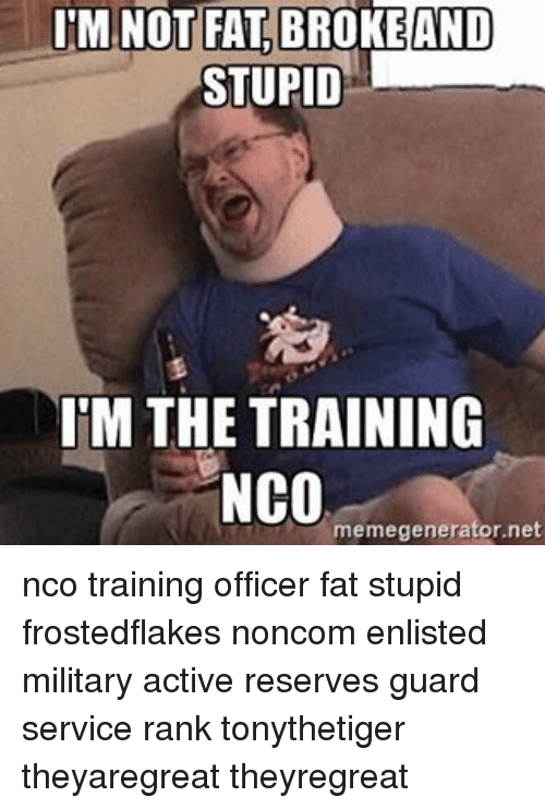 Im Not Fat: IM NOT FAT BROKE AND  STUPID  IM THE TRAINING  NCO  memegenerator.net nco training officer fat stupid frostedflakes noncom enlisted military active reserves guard service rank tonythetiger theyaregreat theyregreat