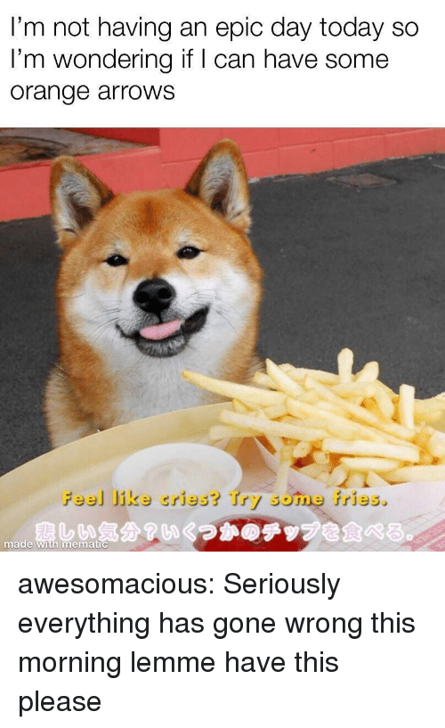 Gone Wrong: I'm not having an epic day today so  I'm wondering if I can have some  orange arroWS  Feel Jike cries? Try some fries.  nade燾しい気分?いくつかのテップを食べる。  with mematic awesomacious:  Seriously everything has gone wrong this morning lemme have this please