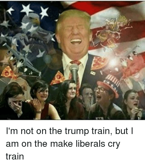 Liberal Crying: I'm not on the trump train, but I am on the make liberals cry train