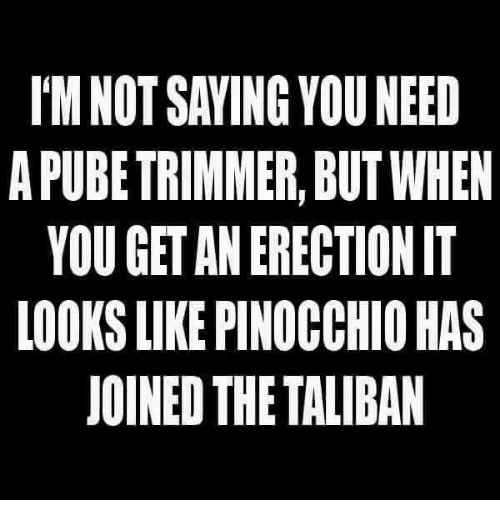 Taliban, Pinocchio, and Erection: I'M NOT SAVING YOU NEED  A PUBE TRIMMER, BUT WHEN  YOU GET AN ERECTION IT  LOOKS LIKE PINOCCHIO HAS  JOINED THE TALIBAN