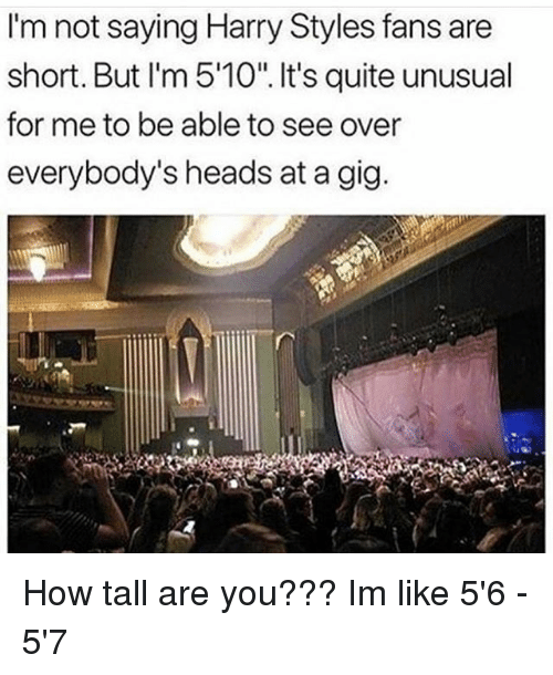 "Memes, Harry Styles, and Quite: I'm not saying Harry Styles fans are  short. But I'm 5'10"". It's quite unusual  for me to be able to see over  everybody's heads at a gig How tall are you??? Im like 5'6 - 5'7"