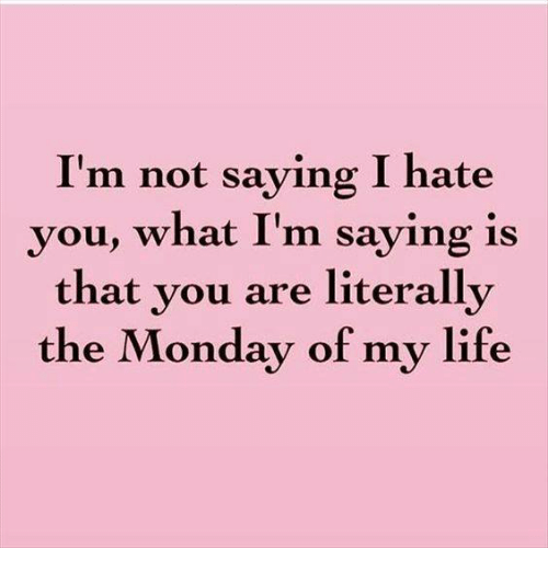 Im Not Saying I Hate You: I'm not saying I hate  you, what I'm saying is  that you are literally  the Monday of my life