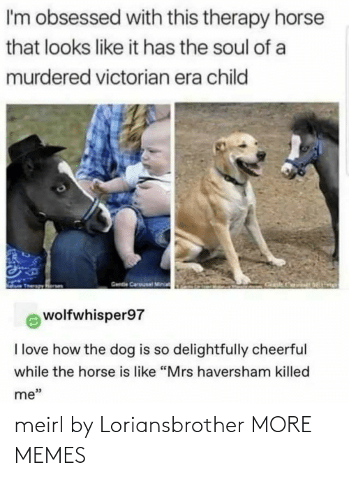 "soul: I'm obsessed with this therapy horse  that looks like it has the soul of a  murdered victorian era child  Gende Carousal Minia  wolfwhisper97  I love how the dog is so delightfully cheerful  while the horse is like ""Mrs haversham killed  me"" meirl by Loriansbrother MORE MEMES"