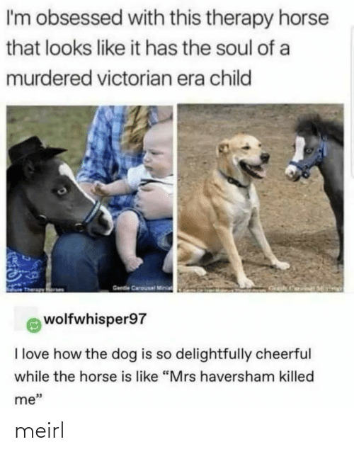 "soul: I'm obsessed with this therapy horse  that looks like it has the soul of a  murdered victorian era child  Gende Carousal Minia  wolfwhisper97  I love how the dog is so delightfully cheerful  while the horse is like ""Mrs haversham killed  me"" meirl"