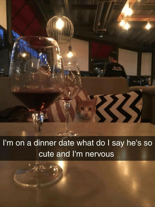 Cute, Date, and What: I'm on a dinner date what do I say he's so  cute and I'm nervous