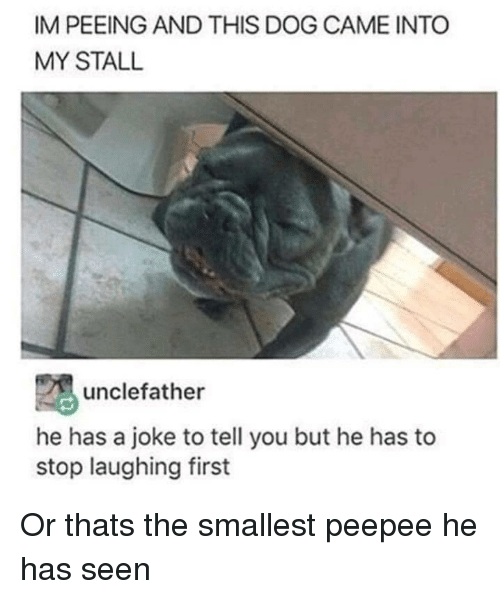 Dog, First, and You: IM PEEING AND THIS DOG CAME INTO  MY STALL  unclefather  he has a joke to tell you but he has to  stop laughing first Or thats the smallest peepee he has seen