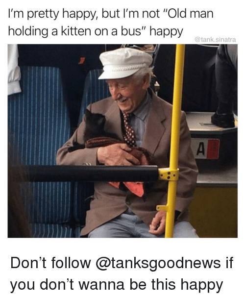 """Funny, Old Man, and Happy: I'm pretty happy, but I'm not """"Old man  holding a kitten on a bus"""" happy  @tank.sinatra Don't follow @tanksgoodnews if you don't wanna be this happy"""