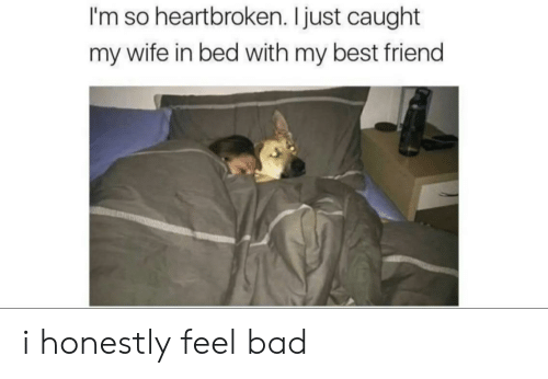 Bad, Best Friend, and Best: I'm so heartbroken. I just caught  my wife in bed with my best friend i honestly feel bad