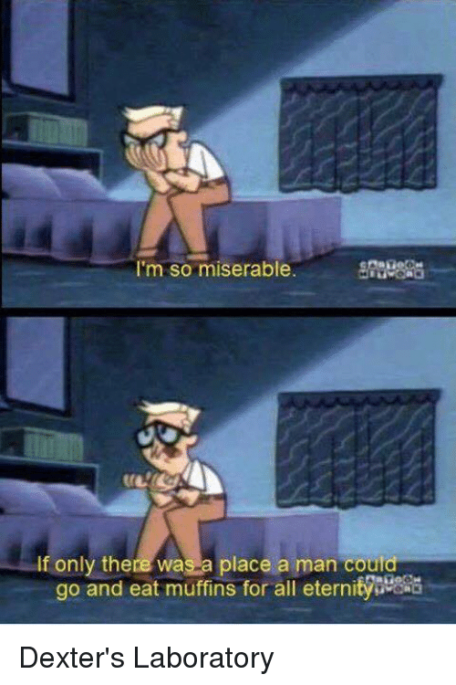 Memes, Dexter's Laboratory, and 🤖: I'm so miserable  If only there was a place a man could  go and eat muffins for all eternitys Dexter's Laboratory