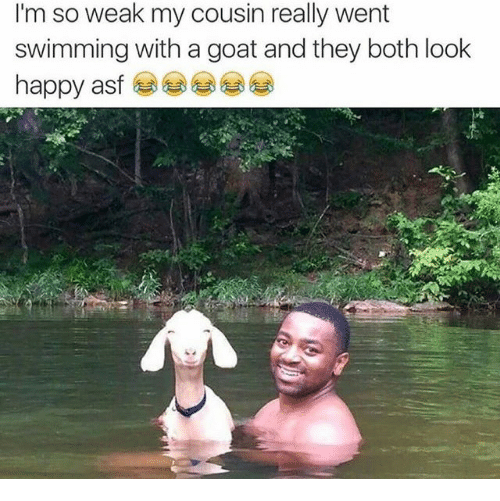 Goat, Swimming, and Cousin: I'm so weak my cousin really went  swimming with a goat and they both look