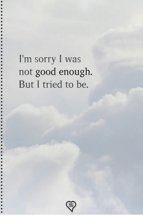 Memes, Sorry, and Good: I'm sorry I was  : not good enough.  But I tried to be.