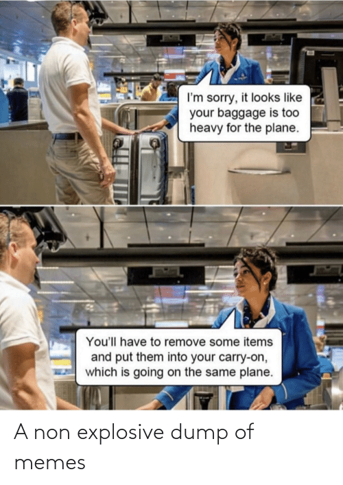 plane: I'm sorry, it looks like  your baggage is too  heavy for the plane.  You'll have to remove some items  and put them into your carry-on,  which is going on the same plane. A non explosive dump of memes