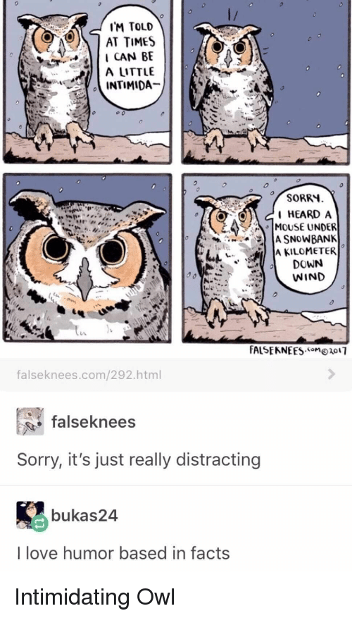 "Facts, Love, and Sorry: IM TOLD  AT TIMES  I CAN BE  A LITTLE  SORRY  HEARD A  MOUSE UNDER  "" IA KILOMETER  DOWN  WIND  falseknees.com/292.html  falseknees  Sorry, it's just really distracting  bukas24  I love humor based in facts Intimidating Owl"