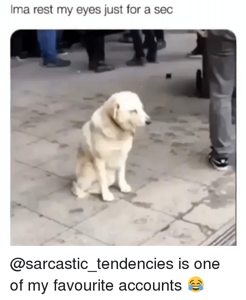 Memes, 🤖, and Sec: Ima  rest  my  eyes  just  for  a  sec @sarcastic_tendencies is one of my favourite accounts 😂