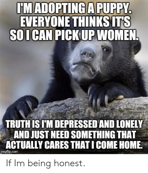 Home, Puppy, and Women: I'MADOPTING A PUPPY  EVERYONE THINKS ITS  SOI CAN PICK UP WOMEN.  TRUTH IS I'M DEPRESSED AND LONELY  AND JUST NEED SOMETHING THAT  ACTUALLY CARES THATI COME HOME.  imgflip.com If Im being honest.
