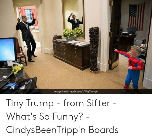 Tinytrumps: Image Credit: reddit.com/t/TinyTrumps Tiny Trump - from Sifter - What's So Funny? - CindysBeenTrippin Boards