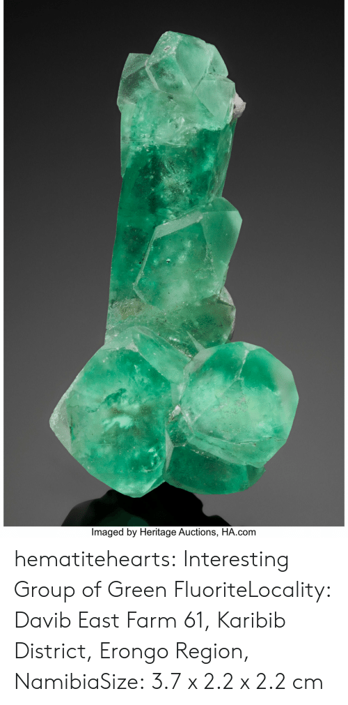 Gif, Tumblr, and Blog: Imaged by Heritage Auctions, HA.conm hematitehearts:  Interesting Group of Green FluoriteLocality:  Davib East Farm 61, Karibib District, Erongo Region, NamibiaSize:  3.7 x 2.2 x 2.2 cm