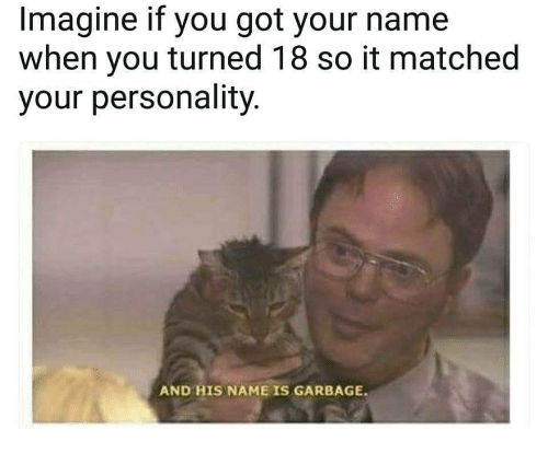 Got, Garbage, and Imagine: Imagine if you got your name  when you turned 18 so it matched  your personality  AND HIS NAME IS GARBAGE.