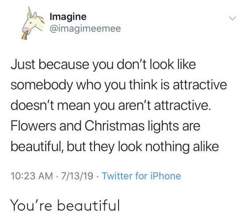 Beautiful, Christmas, and Iphone: Imagine  @imagimeemee  Just because you don't look like  somebody who you think is attractive  doesn't mean you aren't attractive.  Flowers and Christmas lights are  beautiful, but they look nothing alike  10:23 AM 7/13/19 Twitter for iPhone You're beautiful