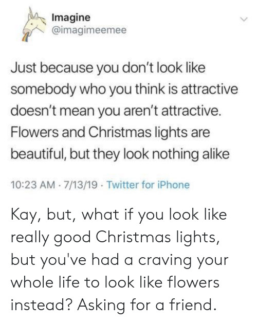 Beautiful, Christmas, and Iphone: Imagine  @imagimeemee  Just because you don't look like  somebody who you think is attractive  doesn't mean you aren't attractive.  Flowers and Christmas lights are  beautiful, but they look nothing alike  10:23 AM 7/13/19 Twitter for iPhone Kay, but, what if you look like really good Christmas lights, but you've had a craving your whole life to look like flowers instead? Asking for a friend.