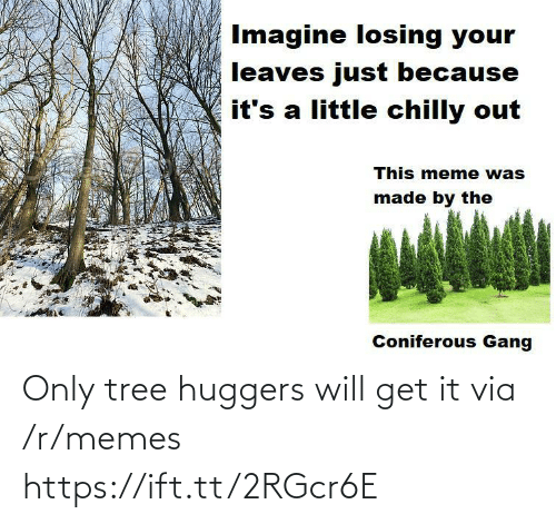 Meme, Memes, and Gang: Imagine losing your  leaves just because  it's a little chilly out  This meme was  made by the  Coniferous Gang Only tree huggers will get it via /r/memes https://ift.tt/2RGcr6E
