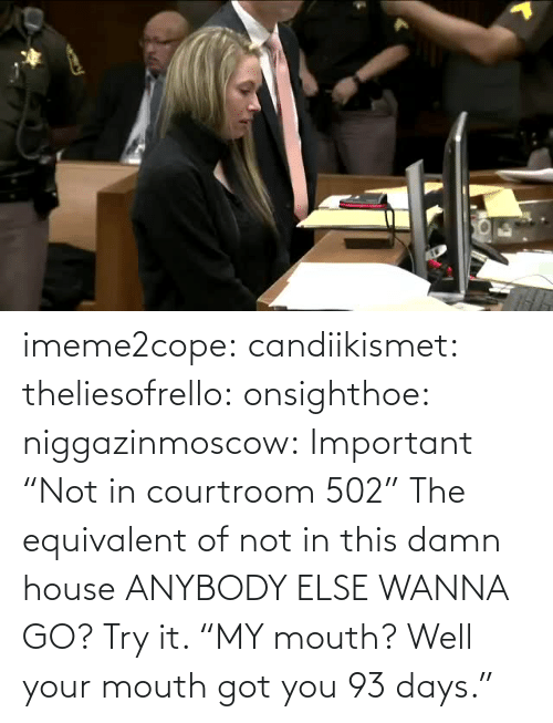 "House: imeme2cope:  candiikismet:   theliesofrello:   onsighthoe:   niggazinmoscow:  Important  ""Not in courtroom 502""   The equivalent of not in this damn house    ANYBODY ELSE WANNA GO?  Try it.     ""MY mouth? Well your mouth got you 93 days."""