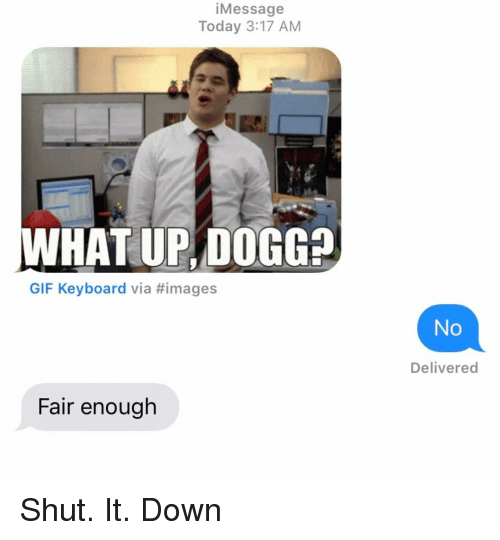 what up: iMessage  Today 3:17 AM  WHAT UP, DOGG?  GIF Keyboard via #images  No  Delivered  Fair enough Shut. It. Down