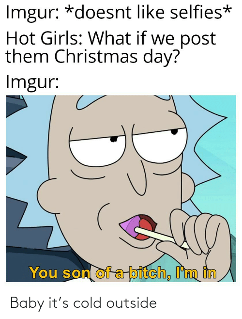 Cold: Imgur: *doesnt like selfies*  Hot Girls: What if we post  them Christmas day?  Imgur:  You son of a-bitch, I'm in Baby it's cold outside
