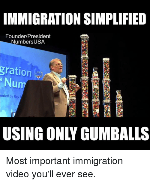 Memes, Immigration, and Video: IMMIGRATION SIMPLIFIED  Founder/President  NumbersUSA  gration  Num  ented by Roy  USING ONLY GUMBALLS Most important immigration video you'll ever see.