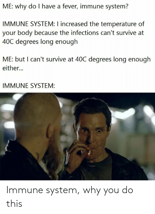 You Do: Immune system, why you do this