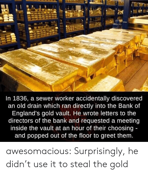 vault: In 1836, a sewer worker accidentally discovered  an old drain which ran directly into the Bank of  England's gold vault. He wrote letters to the  directors of the bank and requested a meeting  inside the vault at an hour of their choosing  and popped out of the floor to greet them awesomacious:  Surprisingly, he didn't use it to steal the gold