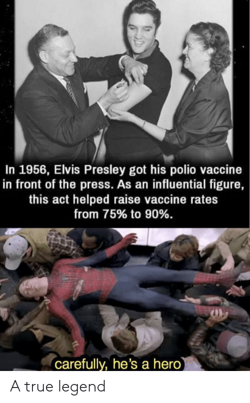 True Legend: In 1956, Elvis Presley got his polio vaccine  in front of the press. As an influential figure,  this act helped raise vaccine rates  from 75% to 90%.  carefully, he's a hero A true legend