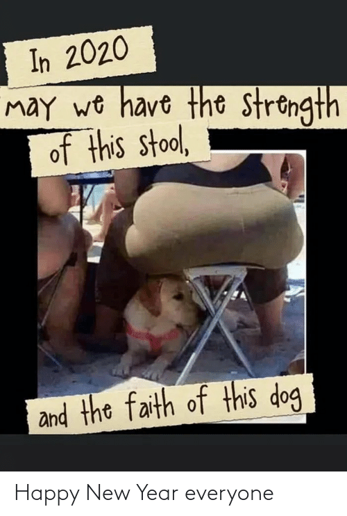 may: In 2020  may wo have the strongth  of this stool,  and the faith of this dog Happy New Year everyone