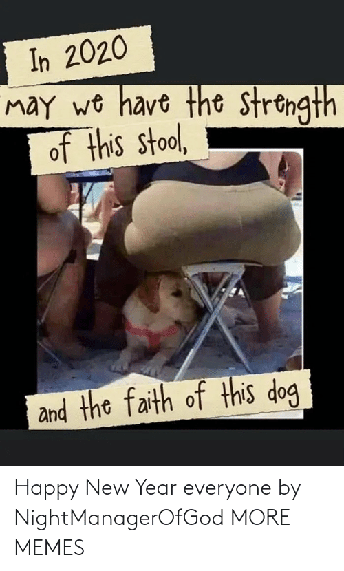New Year's: In 2020  may wo have the strongth  of this stool,  and the faith of this dog Happy New Year everyone by NightManagerOfGod MORE MEMES
